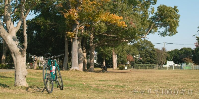 公園とクロスバイクの画像