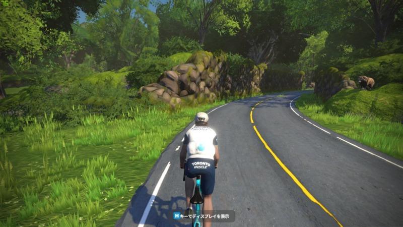 マクリ島コースにいるタヌキを紹介する画像